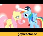 Rainbow Dash and Fluttershy Kiss,Entertainment,,MrPoniator created this. Not me  I will give a link to my few videos that I made  http://www.youtube.com/watch?v=n-c5rXs2yFw http://www.youtube.com/watch?v=wMWe45Nno-w&feature=plcp http://www.youtube.com/watch?v=4bcdyrSE6a4&feature=plcp