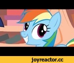 "Rainbow Dash Is Excited,Entertainment,,And also multiplying Ponies do that sometimes Usually accidentally     Song is a snippet of Weird Al's ""Alternative Polka"", specifically 1:14 in: https://www.youtube.com/watch?v=C0g_LYOFJ1I This snippet is based on this song:"