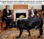 Канцлер Германии Ангела Меркель известна тем, что боится собак. Угадайте, кого привел к ней на встречу наш Вовка
