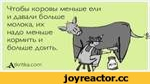 Чтобы коровы меньше ели и давали больше молока, их надо меньше кормить и больше доить. ^ДгкгПка.сот