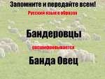 Запомните и передайте всем! Русский язык в образах Бандеровцы расшифровывается Банда Овец II