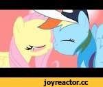 My Little Pony - Rainbow Dash and Fluttershy Kiss,Film,,I am a cartoon fan & i have to say this version of My Little Pony is really cute & funny credit: MrPoniator