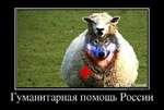 алии ОЕМОТП/ЛТО 05.10 Гуманитарная помощь России