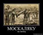 МОСКАЛЯКУ на гиляку RusDemotivator.Ru