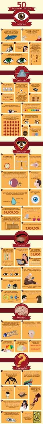 О ГЛАЗАХ МОРГАНИЕ Жировой слой Слизь раз в минуту, ,2 млн раз в год эзгом, а не глазами, очевидно, но иногда эхого зрения •лемы с мозгом. глаза ИНТЕРЕСНЫХ ФАКТОВ Дети не различают цвета после родов. Если у вас голубые глаза, то у вас со всем голубоглазым населением планеты был общий предо