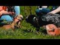 Знакомство лис с носухой,Pets & Animals,Домашние_лисы,Лис,Лиса,Лисица,Тор,Иблис,Адисей,Домашни лисы,Питомец,Животное,Животные,Рыжий,Обыкновенная лисица,Серебристо-черная лисица,Игра,Содержание,Дрессировка,Fox,Thor,Iblis,Adisey,domesticated silver fox,Domashnie_lisy,Pet,Animal,Animals,Golden,Red Fox,
