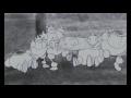 Sonic the Movie 2 Teaser 3 - Animatic,Music,sonic the hedgehog,Sonic the Movie 2 - это русский фанатский проект, создаваемый Zarumo Team https://vk.com/zarumoteam  Первые два тизера: https://www.youtube.com/watch?v=gQFyJTaGQ_g https://www.youtube.com/watch?v=qqXQpjDTxzc
