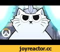 [ NEW HERO ] Jetpack Cat Origin Story | Overwatch,Film & Animation,animation,overwatch,cartoon,gaming,animated,NOT COMING SOON.