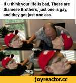 If u think your life is bad, These are Siamese Brothers, just one is gay, and they got just one ass.