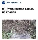({Л РИА НОВОСТИ В Якутии выпал дождь из клопов