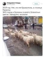 3 ПРАВДИВАЯ ПРАВДА >, @Pravd¡va_pravda V______У 2019 год. Нет, это не Крыжополь, а столица Украины. ЭКО город и балконы в жовто-блакитных цветах. Завидуйте, москали!
