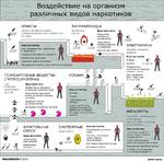 Воздействие на организм различных видов наркотиков ОПИАТЫ КАННАБИНОИДЫ ГЕРОИН, МАКОВАЯ СОЛОМКА, АЦЕТИЛИРОВАННЫЙ ОПИЙ, ОПИЙ СЫРЕЦ, МЕТАДОН МАРИХУАНА, ГАШИШ ч Вред организму НарушениеА умственных^ способностей Замедленное I половое развитие | и созревание Бронхит, рак легких АМФЕТАМИНЫ