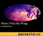 When I Find My Wings - Original MLP Song by MandoPony,Music,,DOWNLOAD: http://www.mediafire.com/?fo84dq0dmpjnu3u This song was rushed, but I hope you guys like it anyways -- I know a lot of people are upset about Twilight, but I won't abandon her! :D This song is about finding your destiny, and