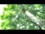 Yokai AMV,Film,,Автор - AomiSan Аниме: Hotarubi no Mori e, Miyori no Mori, Mushishi, Mokke, Natsume Yuujinchou, Princess Mononoke, Wolf's Rain Музыка: Lind Erebros -- Under the Shadow of the Oak