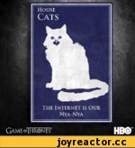 Housi Cats The Internet is Our Nya-Nya